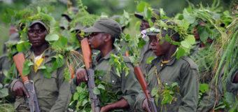 Nord-Kivu: 16 des 22 groupements de Lubero occupés par des groupes armés